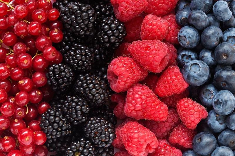 غذاهای مناسب کاهش عفونت کلیه